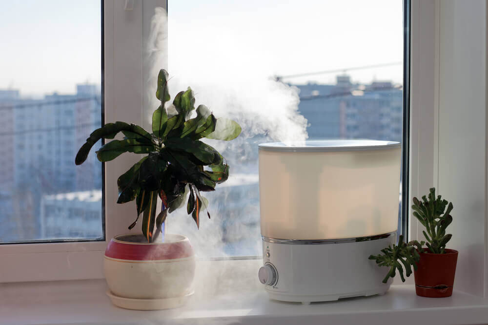 APAC Air Purifier Market on the Rise